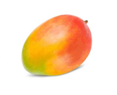 Mango Hopr online supermarkt