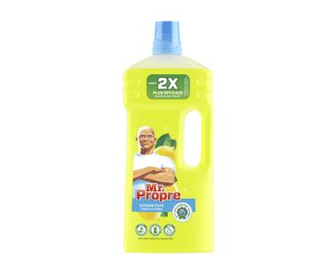 Mr. Propre Vloeibare Allesreiniger Citroen 2L Hopr online supermarkt